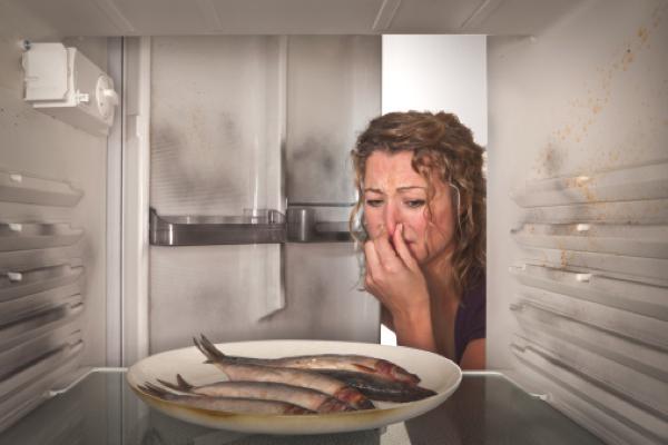 Buzdolabında hoş olmayan koku