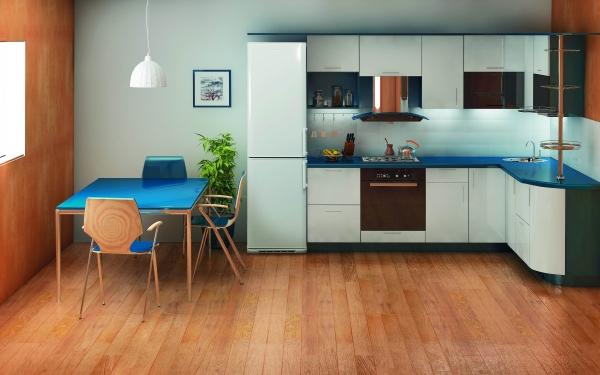 Kjøleskap Biryusa i kjøkkenkroken