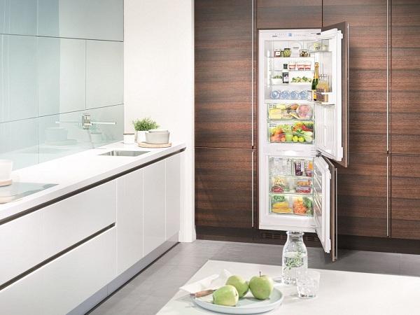 Réfrigérateur intégré