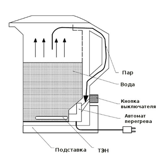 주전자 체계