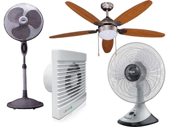 Types de fans