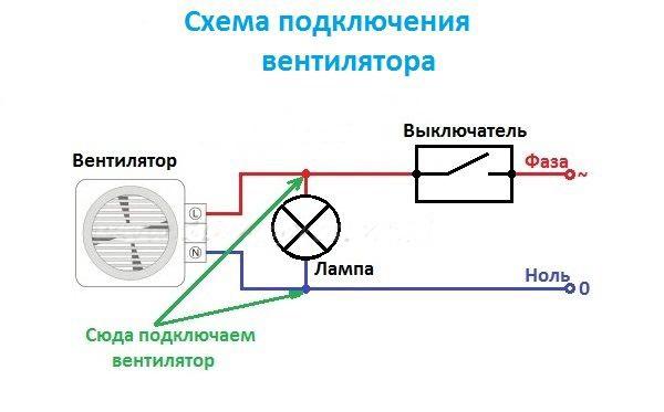 Fanforbindelse diagram