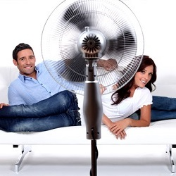 How to choose the best fan for your home