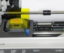Der Drucker druckt nicht