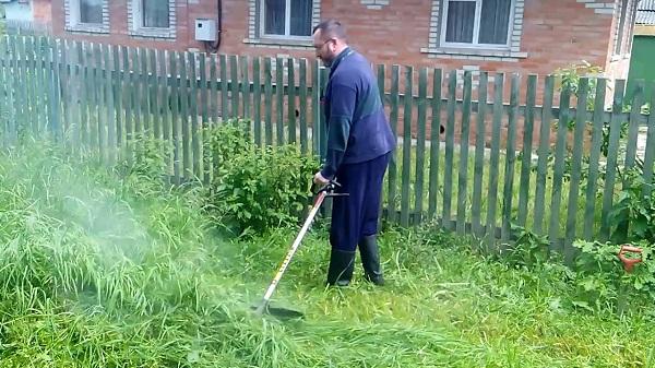 Memotong rumput
