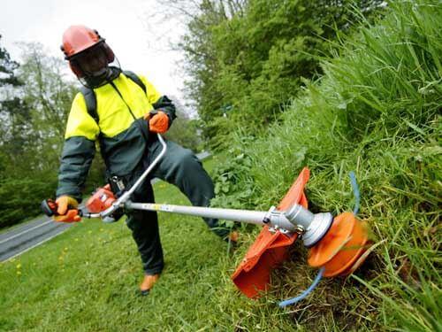 Pemotong rumput berjalan