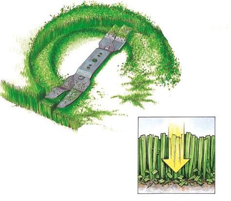 bioklipp