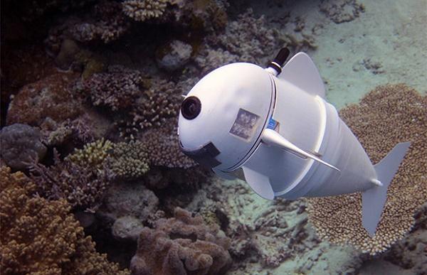 Robot dans l'océan