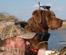 शिकार और मछली पकड़ने के लिए कैमरा