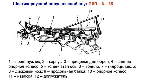 PLP-6-35