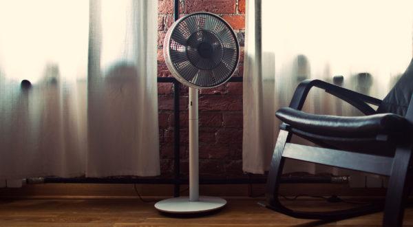 Bork kat fanı