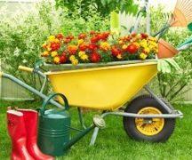 Ausrüstung für den Gärtner