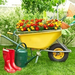 5 types of equipment that must be a gardener